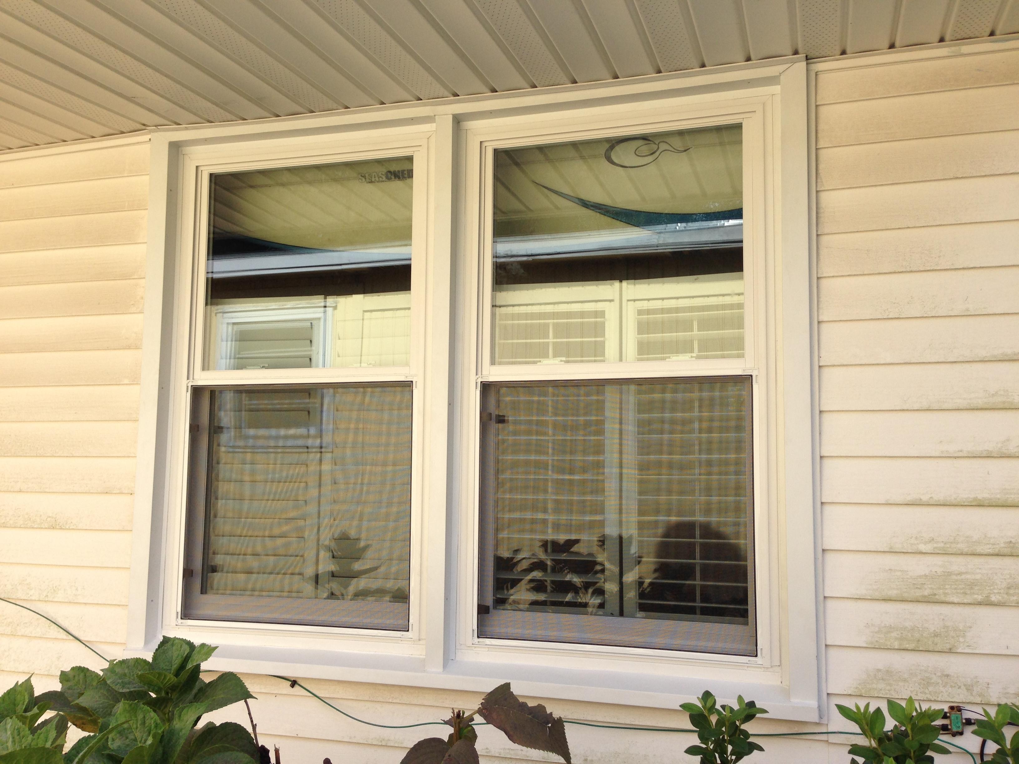Replacement windows in mt pleasant delpino custom homes llc for Custom replacement windows